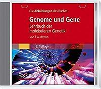 """Die Abbildungen Des Buches """"Genome Und Gene"""": Lehrbuch Der Molekularen Genetik"""