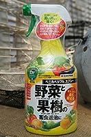 ベニカベジフルスプレー 1000ml 殺虫剤 【資材】【農薬】【薬剤】