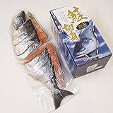 新巻き鮭 紅鮭 贈答ギフトセット (時鮭 姿切身)
