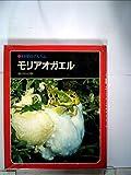 科学のアルバム〈60〉モリアオガエル (1978年)