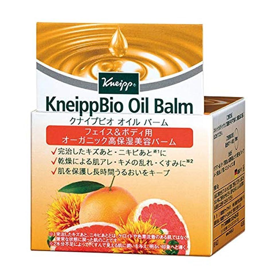 油強盗政治クナイプ(Kneipp) クナイプビオ オイル バーム 50g 美容液