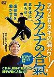 大野朝行先生の【カタカムナの合氣】 ~相手に触れずに、相手が動く方法~ [DVD]