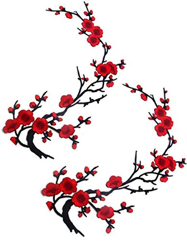 パック悲観主義者送った2枚 刺繍アイロンアップリケワッペン パッチ ドレス飾り 付襟 つけ襟 花柄 裁縫用 飾り素材 刺繍 アクセサリー (大红)