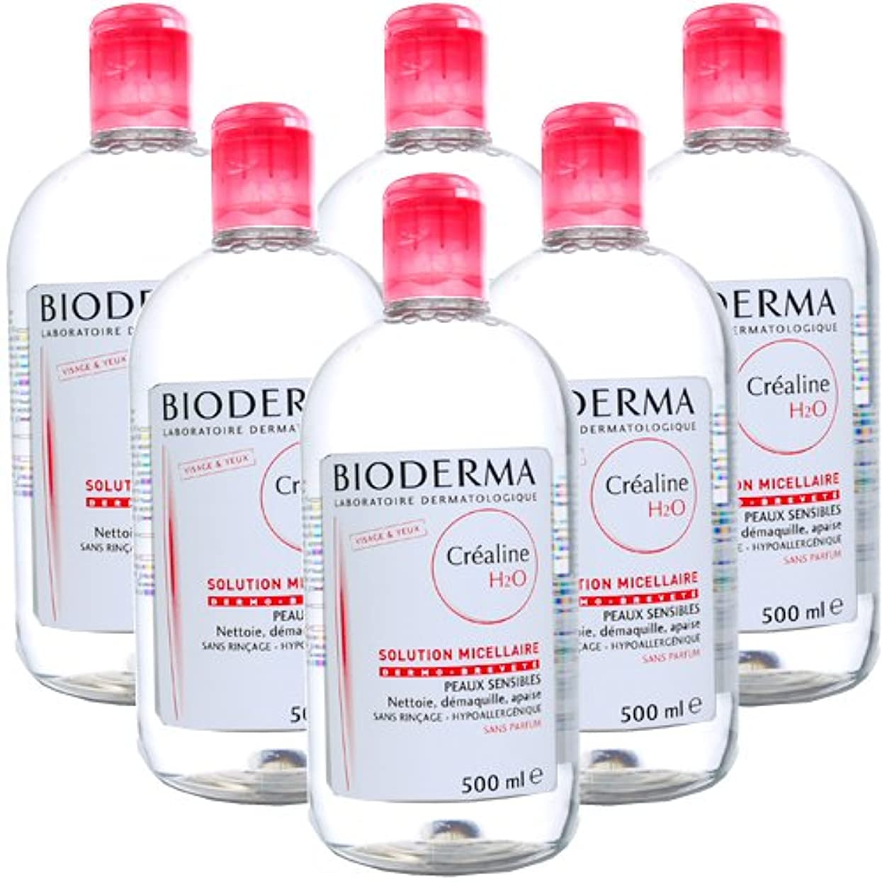 急流約束する式ビオデルマ BIODERMA サンシビオ H2O (エイチ ツーオー) D 500mL 【6本セット】 [並行輸入品]