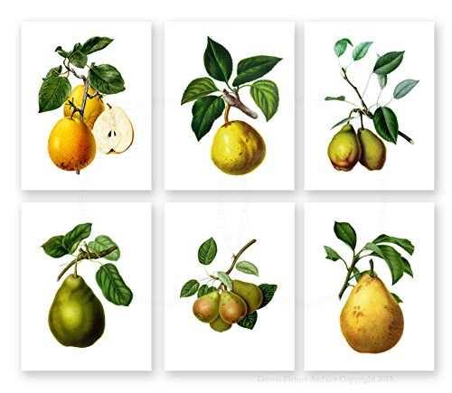 Pearsフルーツ植物壁装飾、Pearsアートワークのセット6枠なし梨アートプリント、ダイニングルーム壁アート、キッチンGnosis写真アーカイブPears _ 6a