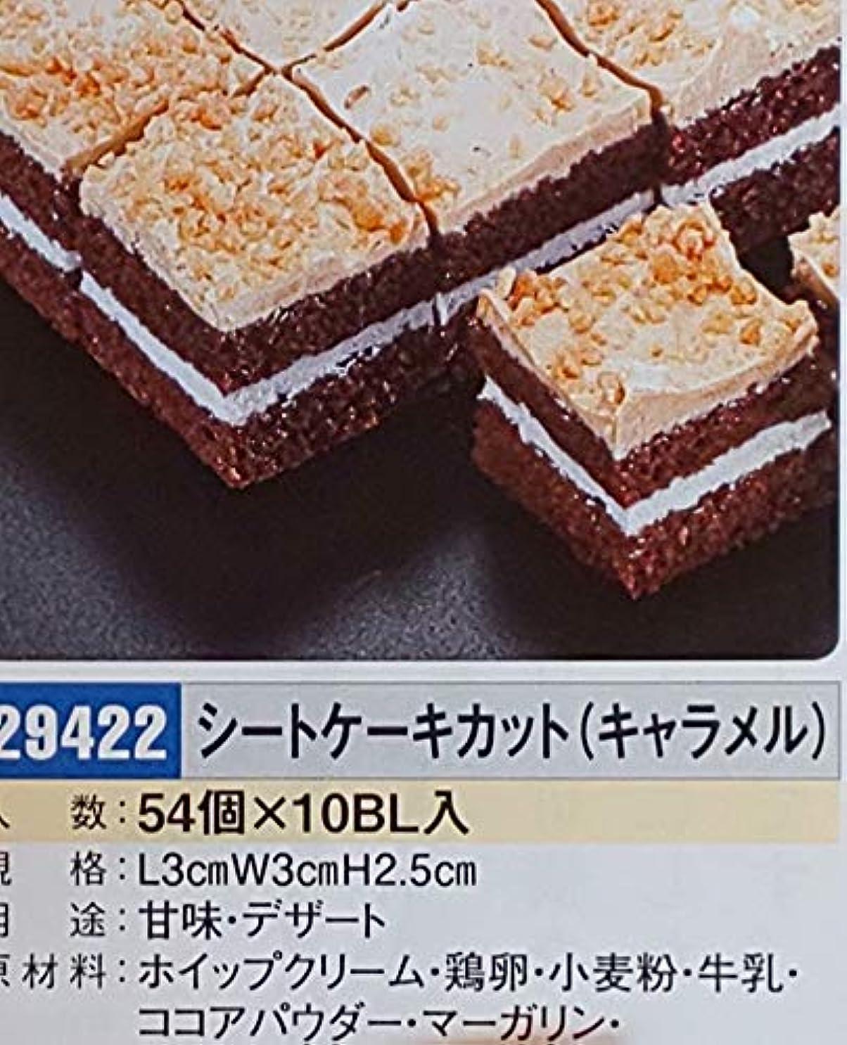 望ましいアクロバット代表団洋菓子 シートケーキカット(キャラメル)54個 業務用 冷凍