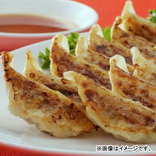 宇都宮餃子「玉ちゃん餃子」2種セット