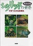シクリッドの世界―子育てをする熱帯魚