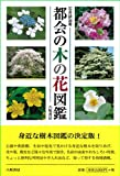都会の木の花図鑑