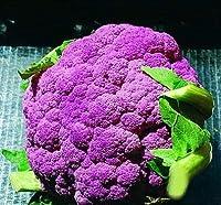 パープルグリーンホワイトイエローブロッコリー、カリフラワー種子オーガニック野菜の種 - 50個/粒子