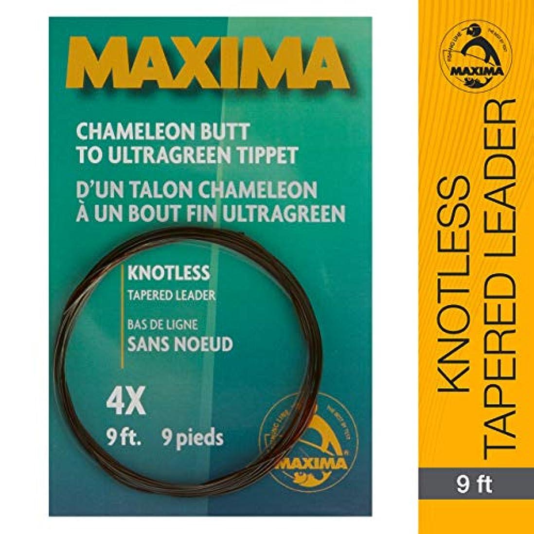 脆い成功する暫定Maxima 釣り糸 9フィート ノットレス テーパードリーダー