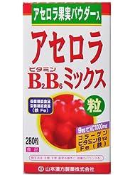 アセロラビタミンB2B6ミックス粒 280粒
