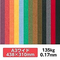 厚紙カラーペーパー『ケンラン(特色) 135Kg(=0.17mm)』 A3ワイドサイズ(438×310mm) 20枚【印刷・工作・名刺・カード・紙飛行機・ペーパークラフト】 セピア