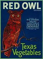 メルセデス、テキサス–レッドフクロウVegetableラベル 16 x 24 Giclee Print LANT-8451-16x24