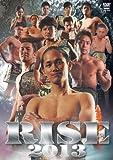 RISE 2013 [DVD]