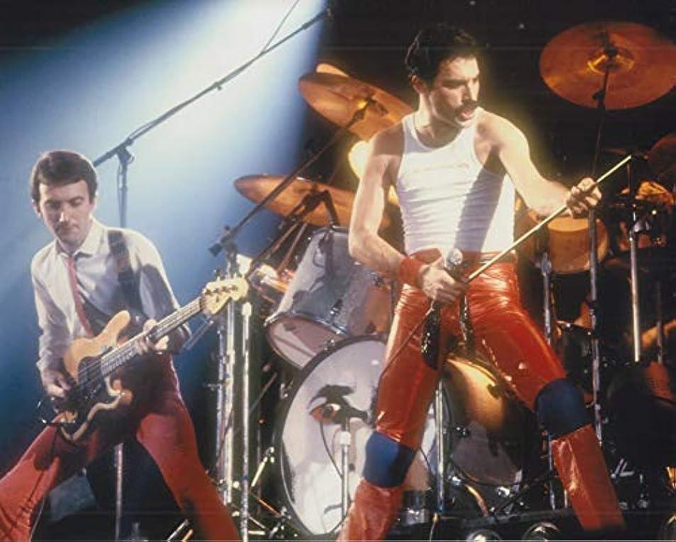 付き添い人国民投票紀元前直輸入、大きな写真、バンド「クイーン」フレディ?マーキュリー、Queen Freddie Mercury、10331