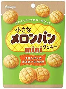 カバヤ 小さなメロンパンクッキー ミニ 41g