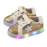 Tovadoo スニーカー 子供シューズ シューズ 星柄 光る靴 発光靴 七彩男の靴 LED輝 運動靴 (13~19cm) スポーツ 男女兼用 スニーカー こども靴 光る靴 Colorful Light Shoes (ゴールド, 17.6CM)