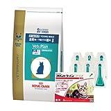 【PACK】ロイヤルカナン ベッツプラン 猫用 メールケア 4kg & 猫用フロントラインプラス 6本(動物用医薬品)