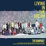 【Amazon.co.jp限定】LIVING IN THE DREAM(CD+DVD( MUSIC VIDEO盤))(ビジュアルシート付き)