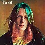 Todd [12 inch Analog]