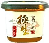 米味噌「極生」翁二年味噌(無添加・天然醸造) 500g 信州の米と丸大豆長期醸造 安心の低塩味噌