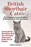 British Shorthair Cats, The Complete Owners Guide to British Shorthair Cats and Kittens Including British Blue, Buying, Daily Care, Personality, Temperament, Health, Diet and Breeders by Colette Anderson(2014-04-27)