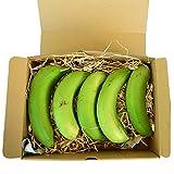 奇跡の沖縄県産 農薬 栽培期間中不使用 伊波さんの三尺バナナ 約120g×10本限定販売 沖縄の太陽を浴びて育った濃厚な風味のバナナ