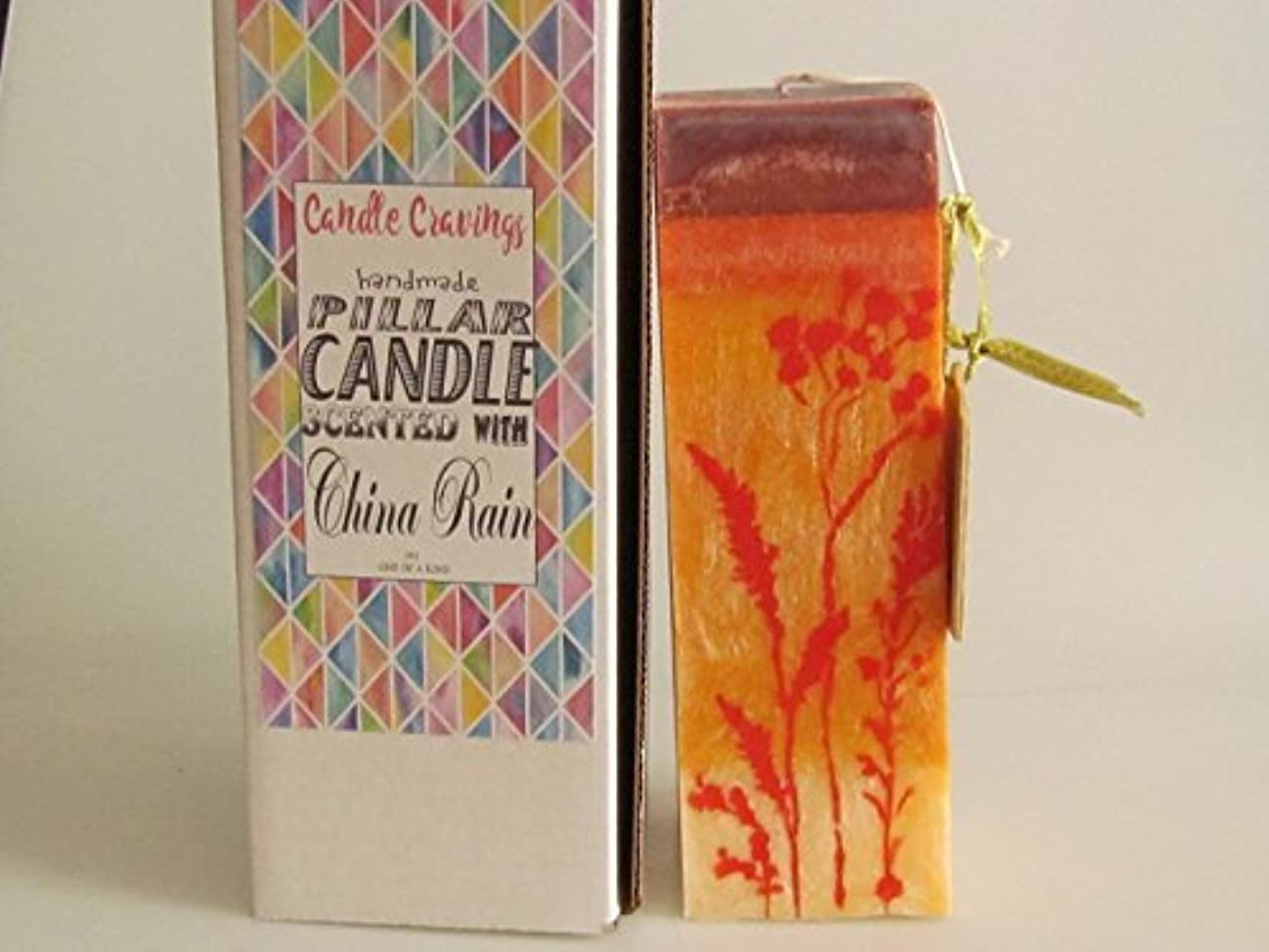リマ名声添加剤China Rain Scented Orange Palm Wax Pillar Candle 3x9.25 [並行輸入品]