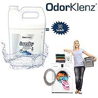 OdorKlenz Laundry Additive, Liquid Large - 30 Loads, Odor Neutralizer, Made in USA by OdorKlenz