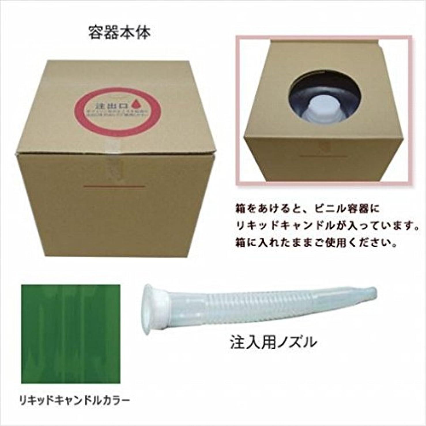学習者愛入射カメヤマキャンドル(kameyama candle) リキッドキャンドル5リットル 「 グリーン 」