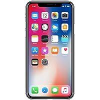 2017 Apple iPhone X SIMフリー 5.8型有機EL画面【米国版SIMフリー】 (256GB, スペースグレー) [並行輸入品]