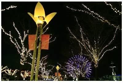 ポストカード「兵庫県神戸ハーバーランド・クリスマスイルミネーション観覧車」Postcard-絵はがき
