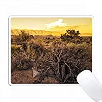Eastern Sierras Sun Reflections PC Mouse Pad パソコン マウスパッド