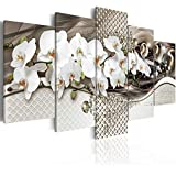 Inzlove Butterfly Orchid Flowers Canvas Wall Art Paintings 5 Panels Abstract White Floral Artwork Pictures