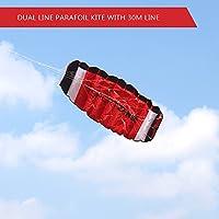 LixadaデュアルラインパラシュートStunt Kite with FlyingツールParafoil KiteアウトドアビーチFunスポーツ