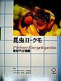 原色ワイド図鑑―Picture encyclopedia (昆虫2・クモ)