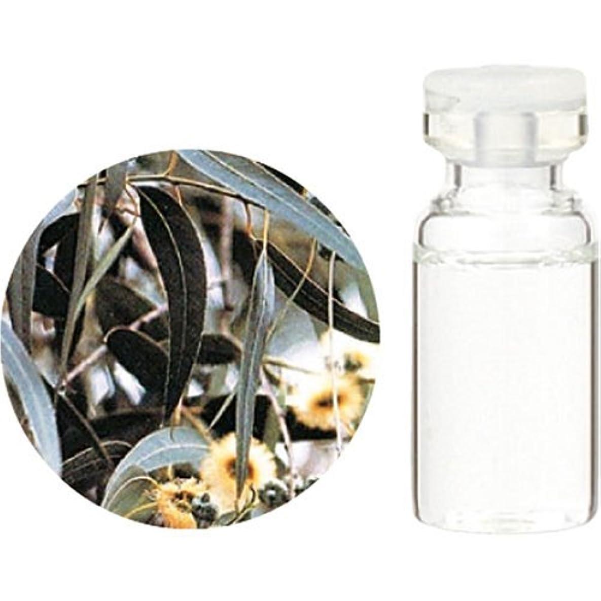 蒸留する鎮静剤唯一生活の木 エッセンシャルオイル ユーカリ?グロブルス 10ml
