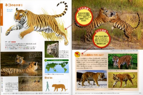 動物 (ポプラディア大図鑑WONDA) ポプラ社