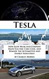 Tesla Motors: How Elon Musk and Company Made Electric Cars Cool, and Remade the Automotive and Energy Industries (English Edition)