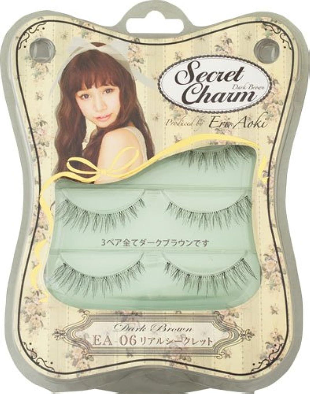 味付け知覚できるインターネットSecret Charm  リアルシークレット ダークブラウン フルタイプ