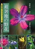 避暑地の野花 (京都書院アーツコレクション) 画像