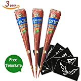 Henna Brown Temporary Tattoo Paste Cone Body Art Painting With Henna Stencil Set (3pcs