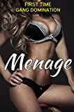 Menage - 3 Book Bundle Volume 4 (English Edition)