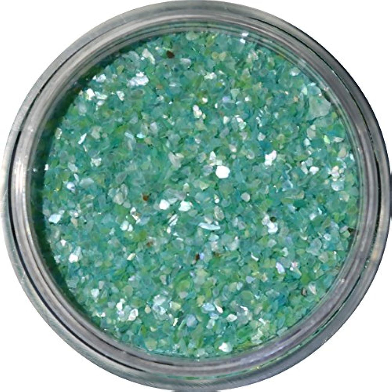 寄生虫シーン余裕がある【jewel】微粒子タイプ シェルパウダー 3g入り 12色から選択可能 (ライトブルー)