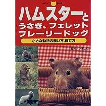 ハムスターとうさぎ、フェレット、プレーリードッグ―小さな動物の飼い方、育て方