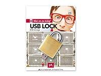 "PT Gift 2gb USB Gold Finish Lock Memory Stick Flash Drive, 2.5"" x 1.5"" [並行輸入品]"