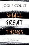 Small Great Things: 'To Kill a Mockingbird for the 21st Century' (English Edition)