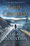 Gray Mountain: A Novel (English Edition)
