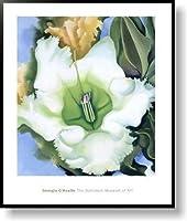 ジョージア・オキーフ cup of silver ginger 1939 【ポスター+フレーム】約 61 x 77 cm ブラック